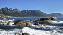 Half Day Private Cape Peninsula Tour, Cape Town, Cultural Tours