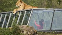 Thoiry Zoo Safari Skip the Line Ticket, Paris, null