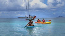 Coral Reef Snorkel and Kayak Tour, St Thomas, Eco Tours