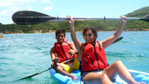 Escursione a St Thomas Shore: Kayak e Coral Reef Discovery, St Thomas, Eastern Caribbean Shore Excursions