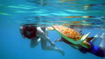 St Thomas Kayak and Sea Turtle Snorkel Excursion, St Thomas, Day Trips