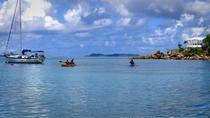 St. Thomas Kayak and Sea Turtle Snorkel Excursion, St Thomas, Snorkeling
