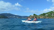 Turtle and Reef Snorkel Kayak Tour, St Thomas, Eco Tours