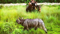 Chitwan Jungle Safari - 2 Nights and 3 Days, Katmandu