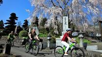 Mt Fuji Satoyama Village Cycling Ecotour (Mar-Nov), Tokyo, 4WD, ATV & Off-Road Tours