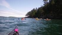 2-Hour Swartz Bay Kayak Tour and Restaurant Lunch, Victoria, Kayaking & Canoeing