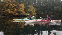 Brentwood Bay Guided Kayak Tours, Victoria