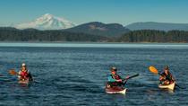 Kayak Tour of Gulf Islands, Victoria, Kayaking & Canoeing