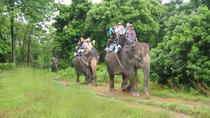 Chitwan tour, Kathmandu, Multi-day Tours