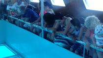 Glass Bottom Boat Sharm el Sheikh, Sharm el Sheikh, Dining Experiences