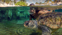 West End Activities and Tour in Grand Cayman, Cayman Islands, Cultural Tours