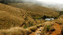 Horton Plains-World's End Tour From Nuwaraeliya, Nuwara Eliya, Day Trips
