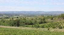 Winery Visit with Food and Wine in Carcassonne, Carcassonne, Wine Tasting & Winery Tours