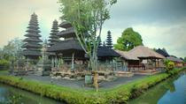 Customizing any tour in Bali with professional private driver, Bali, Private Drivers