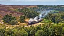 North York Moors and Whitby Day Trip from York