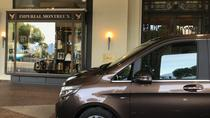 Private Transfer from Basel Airport to Zurich City, Zurich, Airport & Ground Transfers