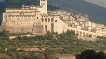 Picnic Lunch in the Vineyard with wine tasting, Assisi, Wine Tasting & Winery Tours