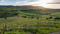 Private Full-Day Brunello Wine Tour of Montalcino, Perugia, Wine Tasting & Winery Tours