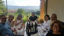 Truffle Hunt & Bio Lunch in Assisi