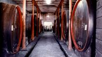 Wine Tasting and Cellar Tour in One of the Oldest Winery of Montefalco, Umbria, Wine Tasting &...
