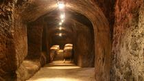 Winery Tour and Tasting of local wine and food, Orvieto, Wine Tasting & Winery Tours