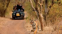 India Tour in 11 Days by Car, Udaipur, Multi-day Tours