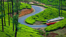 Private Luxury South India Munnar Aleppey Tour in 04 Days, Kochi, Private Sightseeing Tours