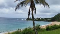 Circle Island Tour 7-14 Pax 8 hour, Oahu, Private Day Trips