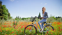 Half Day of visit of Provence and the Carrieres de Lumieres by Electric Bike from St...