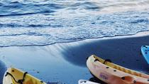 Brisbane Guided Kayaking Tour on Manly Harbour, Sydney, Day Cruises