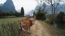 Private Hiking Tour of Li River Highlights from Xianei to Xingping, Guilin, Hiking & Camping