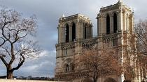 Private Paris Half Day Audio Pen City Tour and Sightseeing Cruise, Paris, City Packages