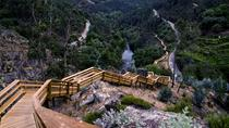 Paiva Walkways and Aveiro from Lisbon, Lisbon, 4WD, ATV & Off-Road Tours