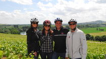 The Champagne Region Bike Tour from Paris, Paris, Bike & Mountain Bike Tours