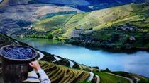 Shore Excursion to Douro valley, Rebelo Cruise Pinhão with Wine tour & tasting, Porto, Ports...