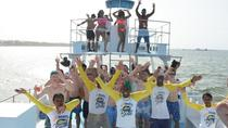 Private Caribbean Party Cruise with Snorkeling and Parasailing, Punta Cana, Day Cruises