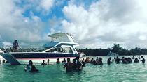 Punta Cana Caribbean Party Boat with Snorkeling and Parasailing, Punta Cana, Day Cruises