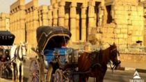 Aswan City Tour by Horse Carriage, Aswan, Horse Carriage Rides
