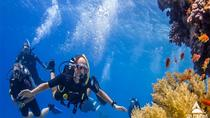Day Tour to Snorkeling Trip to Giftun Island in Egypt, Hurghada, Day Cruises