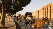 Luxor City Tour By Horse Carriage, Luxor, Horse Carriage Rides
