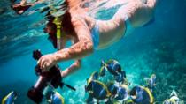 Snorkeling at Mahmya Island from Hurghada in Egypt, Hurghada, Day Cruises
