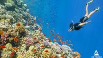 Snorkeling Trip to Giftun Island, Hurghada, 4WD, ATV & Off-Road Tours