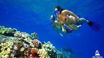 Snorkeling Trip to Tiran Island, Sharm el Sheikh, Other Water Sports