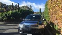 Private San Francisco to Napa Valley Day Trip, Napa & Sonoma, Full-day Tours