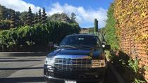 Private San Francisco to Napa Valley Day Trip, Napa & Sonoma, Full-day Tours