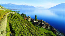 Lavaux Sightseeing Unesco tour by trolley from Montreux, Montreux, Trolley Tours
