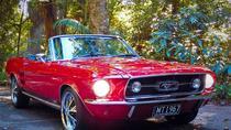 Natural Bridge Rainforest Mustang Tour, Gold Coast, Cultural Tours