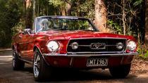 Springbrook Rainforest Plateau Mustang Tour, Gold Coast, Cultural Tours