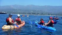 2 Hour Santa Barbara Fun Paddle, Santa Barbara, Kayaking & Canoeing