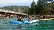 Channel Islands Nature Kayak from Ventura Harbor, Santa Barbara, Kayaking & Canoeing